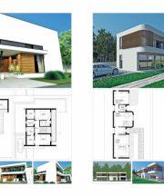 proiecte2